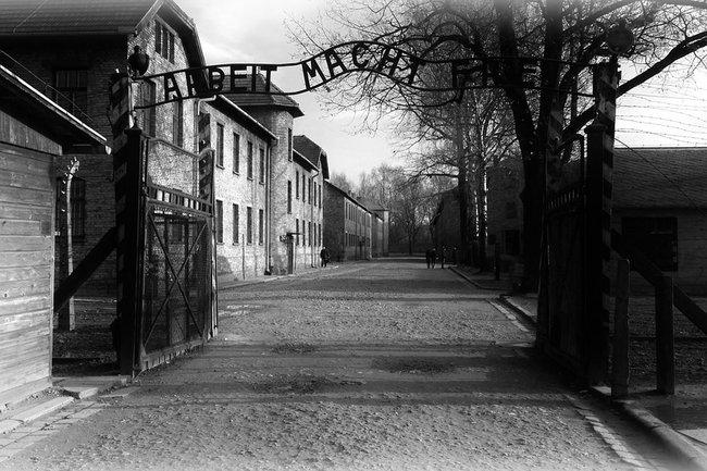 Для своего арт-проекта израильтянка украла экспонаты Освенцима