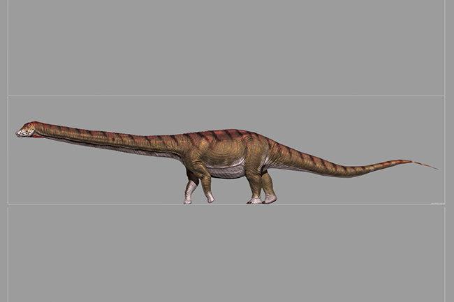 Реконструкция внешнего вида Patagotitan mayorum (с) Jorge Gonzalez