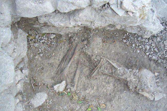 Останки хананея из которых была извлечена ДНК Dr. Claude Doumet Serhal- The Sidon excavation
